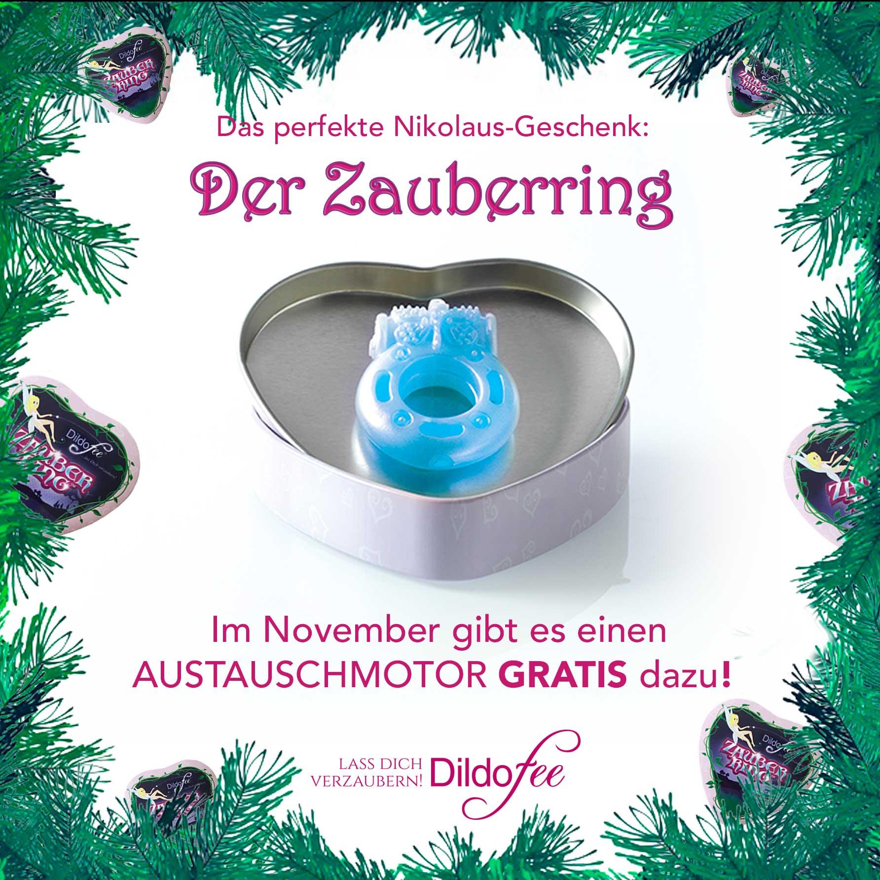 Zauberring_Austauschmotor_2020